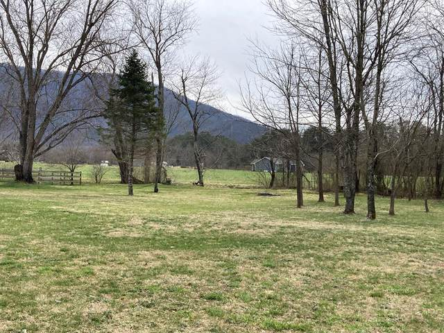 Lot 9 Meadowbrook Ln, Sevierville, TN 37862 (#240977) :: Billy Houston Group