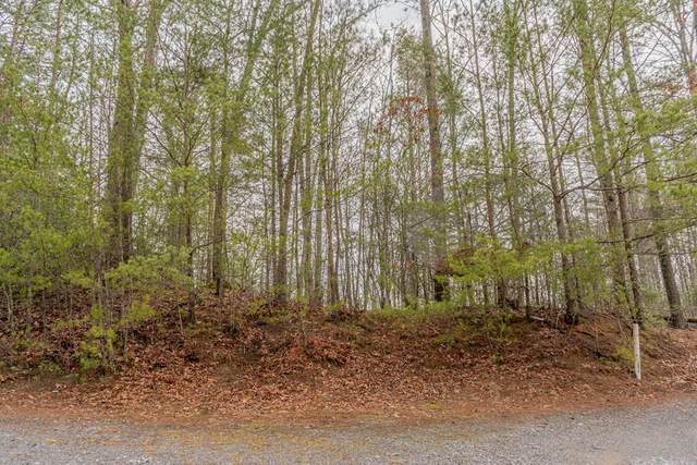 N Teaberry Hill Way, Sevierville, TN 87862 (#241016) :: JET Real Estate