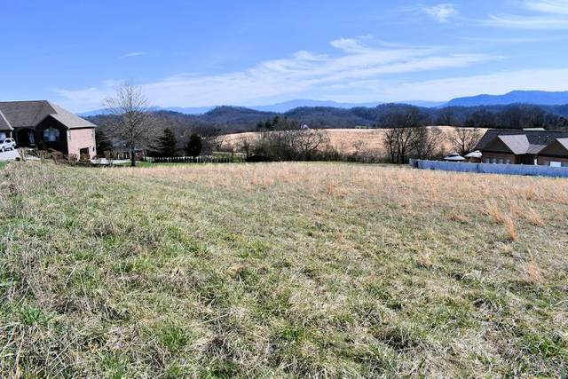 Lot 9 Instrumental Ave, Sevierville, TN 37976 (#241050) :: Century 21 Legacy