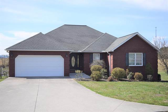1409 Ellis Woods Loop, Sevierville, TN 37876 (#241054) :: Suzanne Walls with eXp Realty