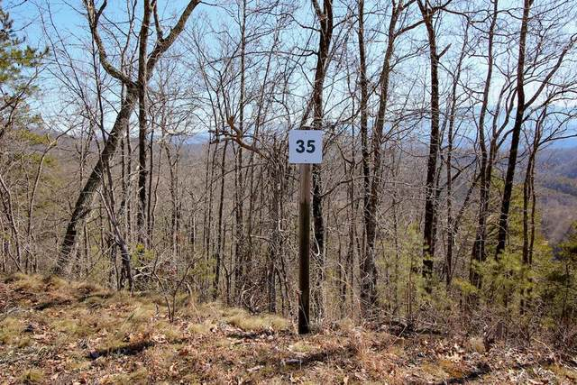 Lot 35 Mountain Ash Way, Sevierville, TN 37876 (#241080) :: Century 21 Legacy
