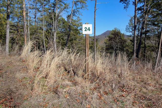 Lot 24 Mountain Ash Way, Sevierville, TN 37876 (#241083) :: Century 21 Legacy