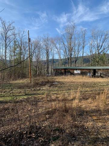 Catons Grove Rd, Cosby, TN 37722 (#241087) :: Prime Mountain Properties