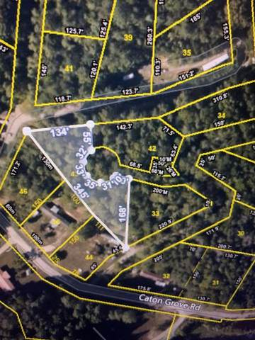 Lot 43 Catons Grove Rd., Cosby, TN 37722 (#241093) :: Century 21 Legacy