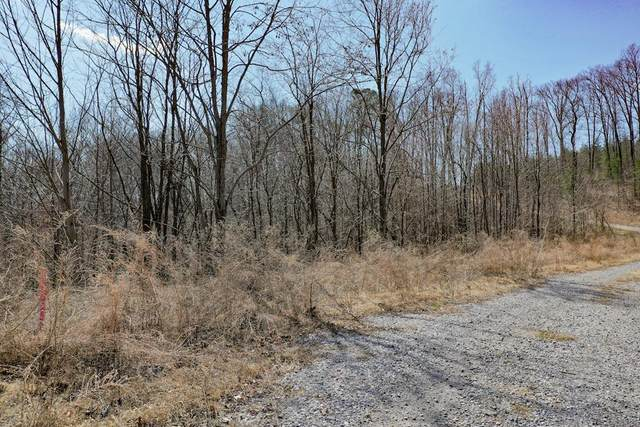 Lot 157 Summit Trails, Sevierville, TN 37876 (#241103) :: Billy Houston Group
