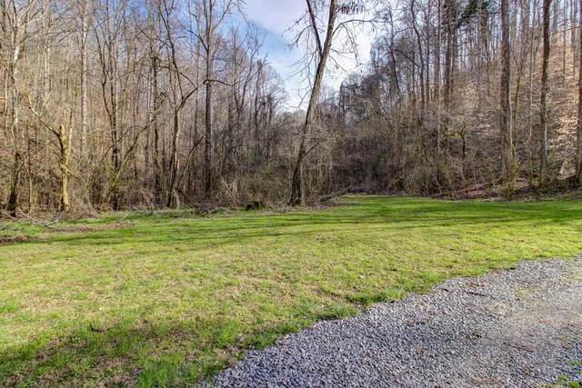 37 Acres Turkey Hollow Lane, Sevierville, TN 37876 (#241145) :: Century 21 Legacy
