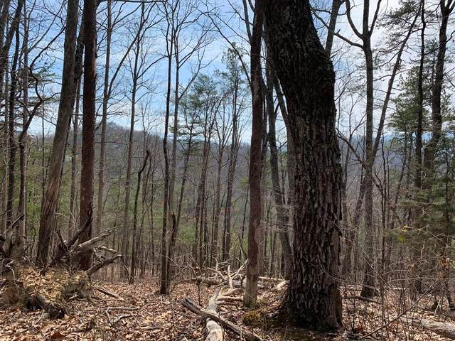 Lot 02/0020 Ridgecrest Way, Sevierville, TN 37862 (#241167) :: Suzanne Walls with eXp Realty