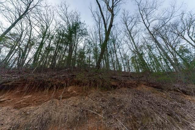 Wilson Hollow Way, Sevierville, TN 37876 (#241183) :: Century 21 Legacy