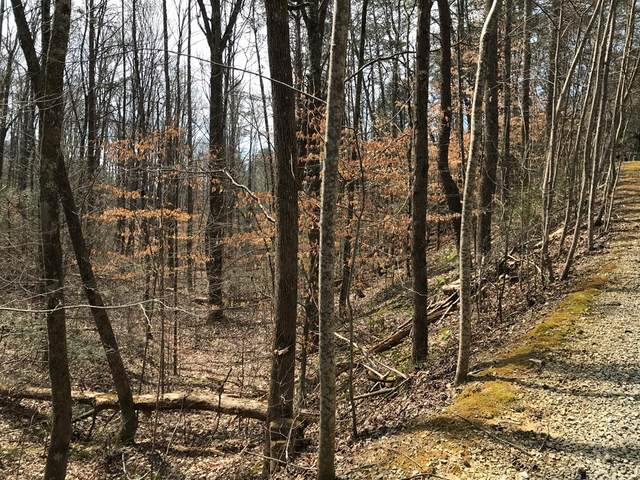 Hidden Cove Way, Sevierville, TN 37862 (#241210) :: Colonial Real Estate