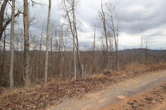 Lot 17-C Laurel Way, Gatlinburg, TN 37738 (#241237) :: Prime Mountain Properties