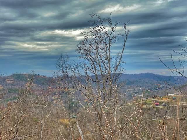 Forest Springs Drive, Gatlinburg, TN 37738 (#241242) :: Century 21 Legacy