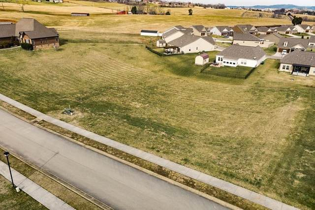 37 & 38 Rippling Waters Ct, Sevierville, TN 37876 (#241255) :: The Terrell-Drager Team
