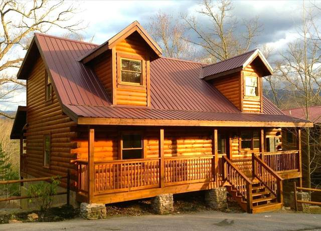 1737 Mountain Shadow Way Brigadoon 1, Gatlinburg, TN 33738 (#241348) :: Billy Houston Group