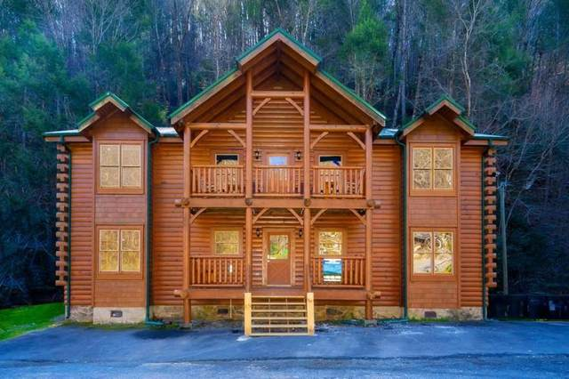 315 Caney Creek Road, Pigeon Forge, TN 37863 (#241380) :: Billy Houston Group