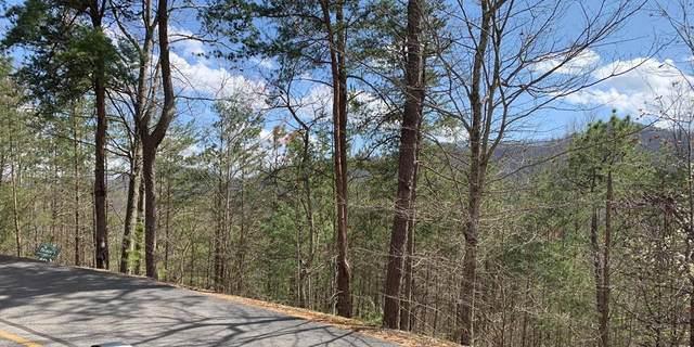 LOT 40 Ridgeback Lane, Sevierville, TN 37862 (#241413) :: Century 21 Legacy