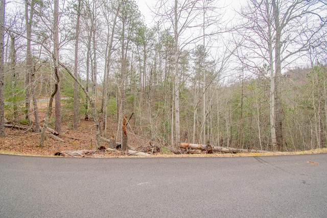 Lot 16 Misty Shadows Drive, Sevierville, TN 37862 (#241446) :: JET Real Estate