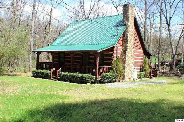 3344 Rocky Ridge Road, Cosby, TN 37722 (#241452) :: Prime Mountain Properties