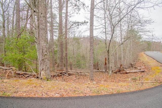 Lot 17 Misty Shadows Drive, Sevierville, TN 37862 (#241459) :: JET Real Estate