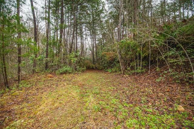 Lot 65 Birch Drive, Sevierville, TN 37876 (#241495) :: Century 21 Legacy