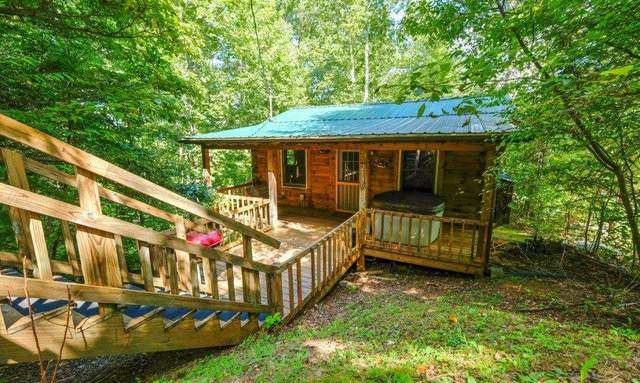 2130 Bear Paw Trail Way, Sevierville, TN 37876 (#241498) :: Suzanne Walls with eXp Realty