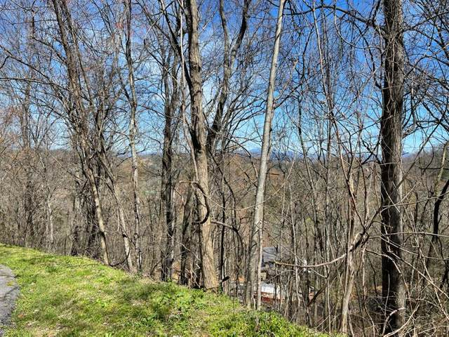 Lot 5 Majestic View Way Majestic View W, Sevierville, TN 37862 (#241506) :: Prime Mountain Properties