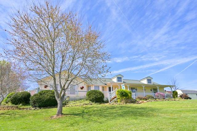1406 Kay View Drive, Sevierville, TN 37876 (#241513) :: Billy Houston Group