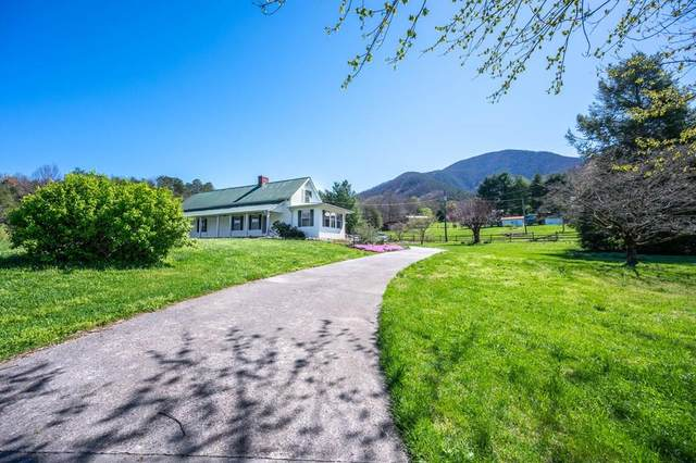 3678 Katy Hollar Rd, Sevierville, TN 37862 (#241576) :: Colonial Real Estate