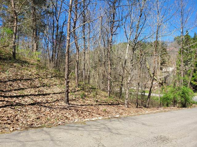 LOT 21 Smoky Mountain Way, Sevierville, TN 37876 (#241591) :: Century 21 Legacy