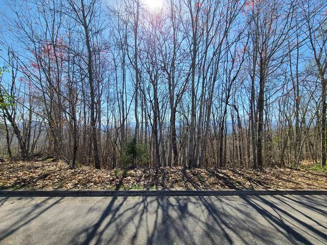 Lot 8 Shell Mountain Road, Sevierville, TN 37876 (#241601) :: Century 21 Legacy