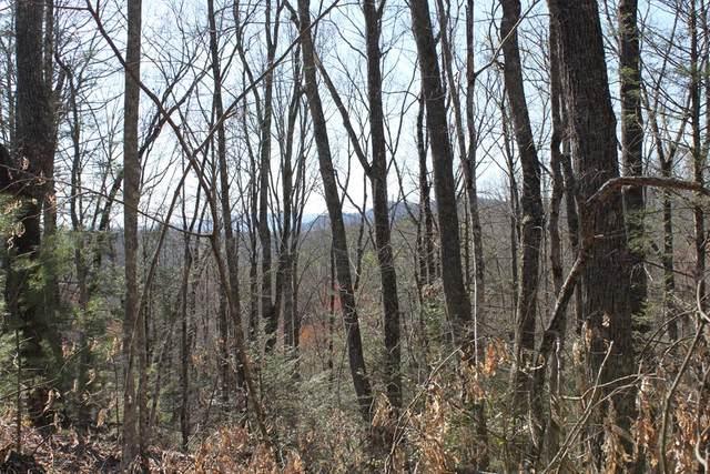 Hunter Hills Way, Sevierville, TN 37876 (#241635) :: Century 21 Legacy