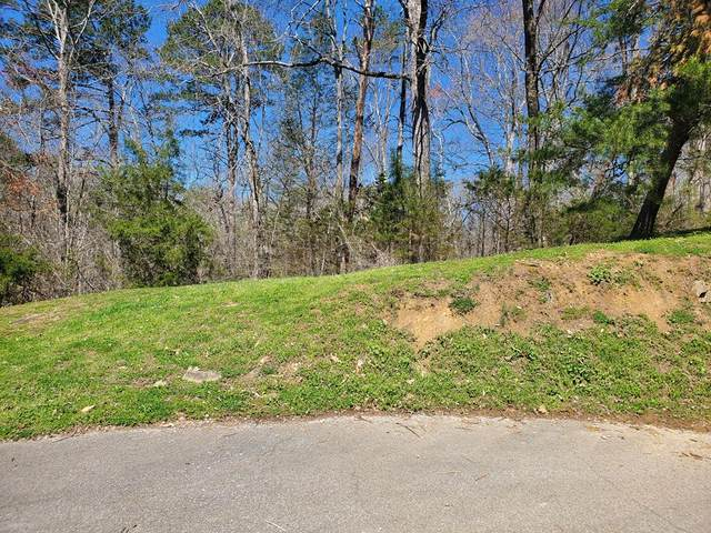 LOT 66 Walini Way, Sevierville, TN 37876 (#241637) :: Century 21 Legacy