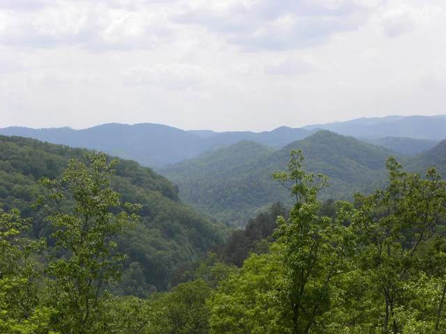 Lot 55W & 56W Long Rifle Rd, Sevierville, TN 37862 (#241686) :: Billy Houston Group