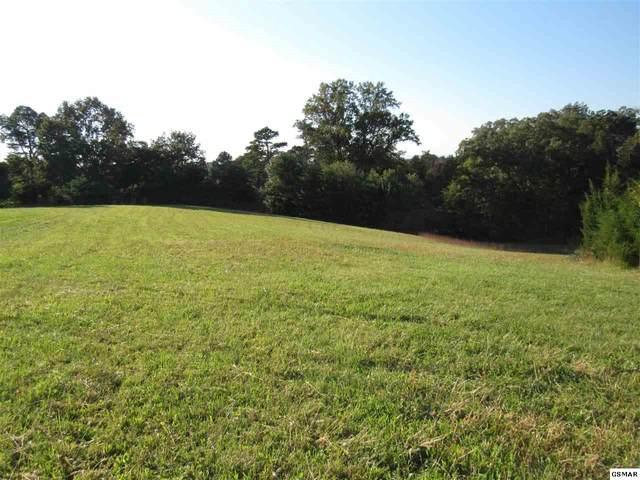 Lot 9 Mossy Oak Drive, Jefferson City, TN 37760 (#241691) :: Colonial Real Estate