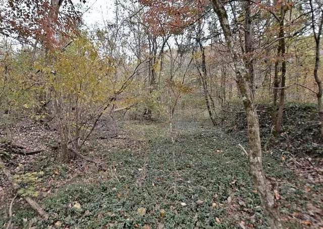 Lot 4 Rocky Flats Rd, Cosby, TN 37722 (#241711) :: Colonial Real Estate