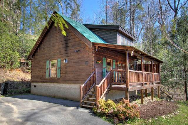 1729 Brent Hills Blvd Country Dream, Gatlinburg, TN 37738 (#241716) :: Century 21 Legacy