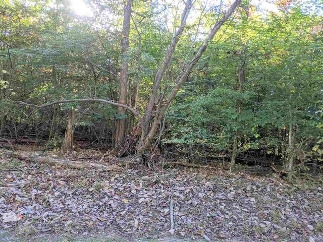 Lot PT 15 Old Chisholm Trail, Dandridge, TN 37725 (#241745) :: Suzanne Walls with eXp Realty