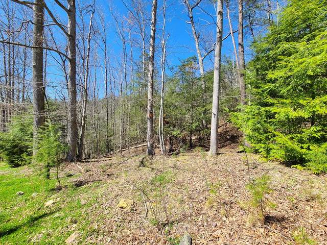 Lot 37 Saint Andrews Way, Gatlinburg, TN 33738 (#241767) :: Prime Mountain Properties