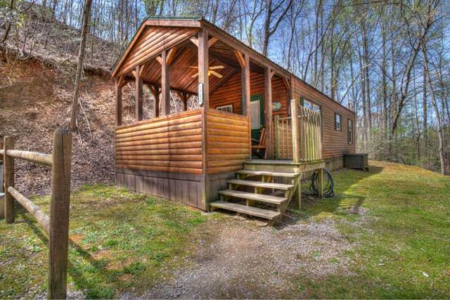 1712 W Ski View Dr, Sevierville, TN 37876 (#241772) :: Suzanne Walls with eXp Realty