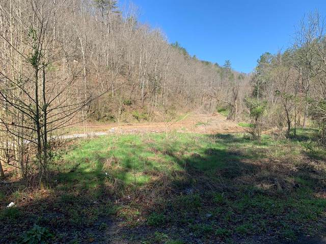 Middle Creek Road, Cosby, TN 37722 (#241783) :: Suzanne Walls with eXp Realty