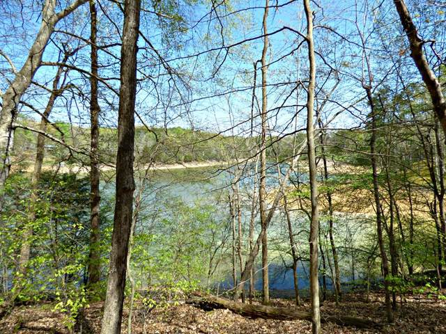 Lot 9 Clark Lane, Dandridge, TN 37725 (#241800) :: Prime Mountain Properties