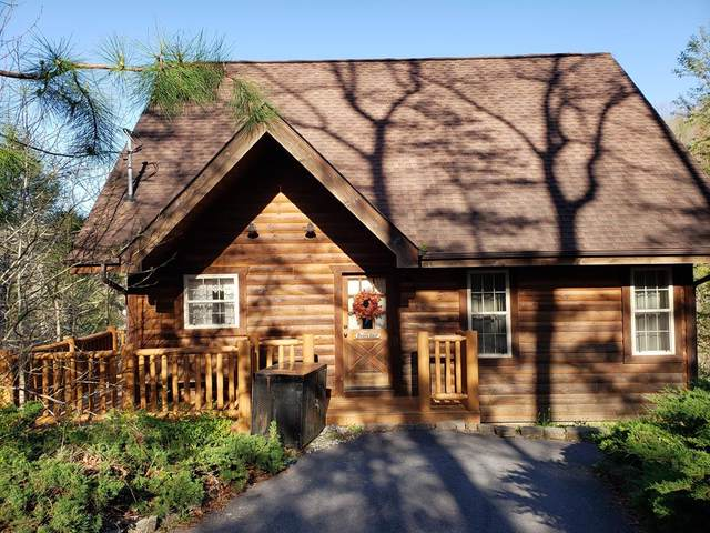 905 Grey Fox Trail, Gatlinburg, TN 37738 (#241821) :: JET Real Estate