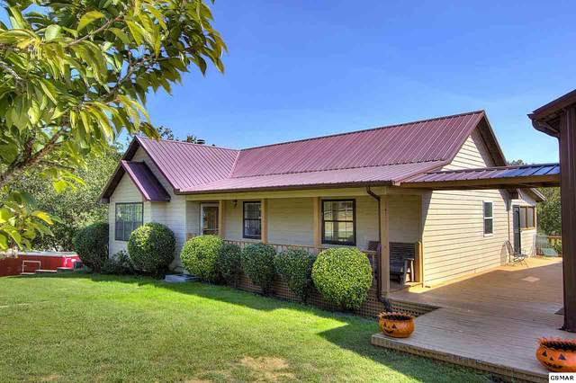 937 Hidden Harbor Lane, Sevierville, TN 37876 (#241860) :: Century 21 Legacy