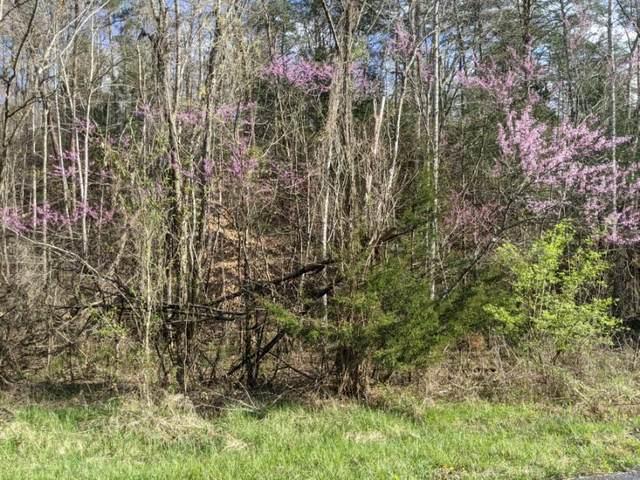 Lot 335 Windfall Estates, Sevierville, TN 37876 (#241883) :: Prime Mountain Properties