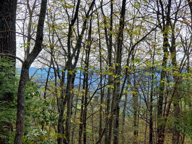 Lot 1 Pinnacle Vista, Gatlinburg, TN 37738 (#241897) :: Prime Mountain Properties