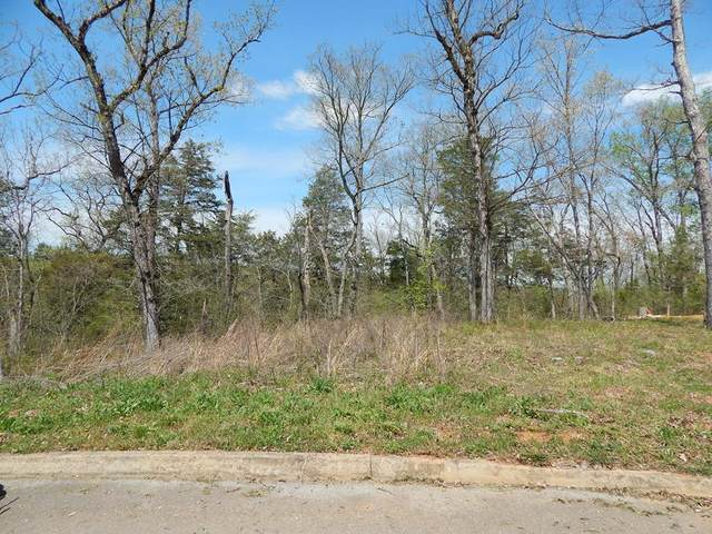 Lot 17 Ally Ln - Lot 17, Sevierville, TN 37876 (#241905) :: Billy Houston Group