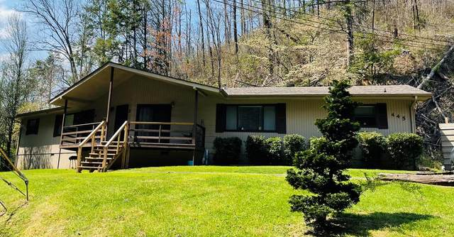 445/447 Dudley Creek, Gatlinburg, TN 37738 (#241918) :: Prime Mountain Properties
