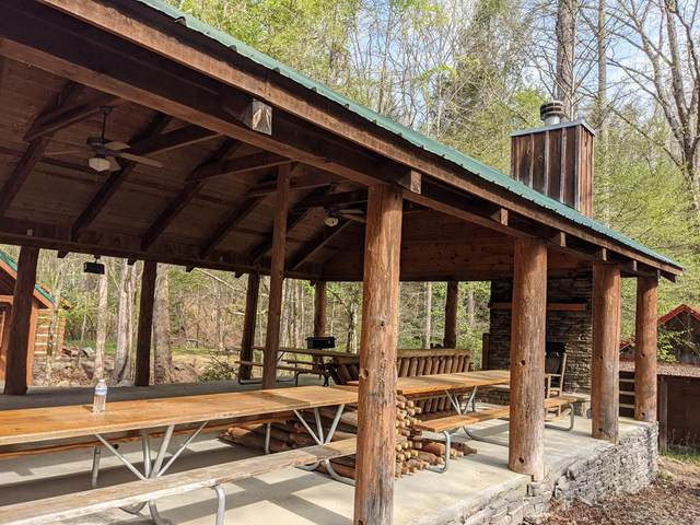Lot 10 Jobey Green Hollow Rd, Sevierville, TN 37876 (#241947) :: Billy Houston Group