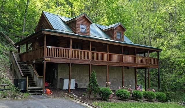 2615 Black Bear Ln, Sevierville, TN 37876 (#241981) :: Prime Mountain Properties