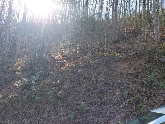 Wildcat Ridge Rd, Sevierville, TN 37876 (#241991) :: Prime Mountain Properties