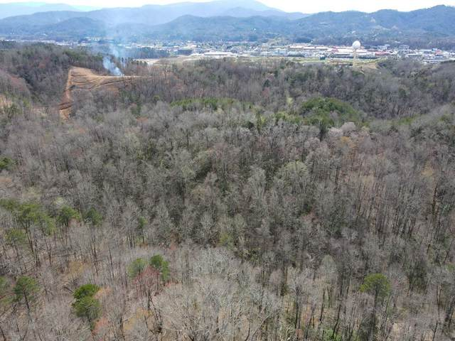 2036 Ridge Rd, Pigeon Forge, TN 37865 (#241995) :: Tennessee Elite Realty